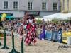 Ritterfest Linz 2014 [179]